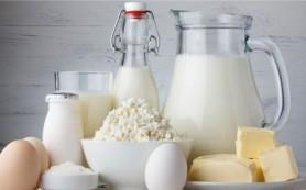 Молочные продукты делают пробиотики более эффективными