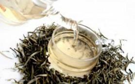 Белый чай. Чем полезен для организма