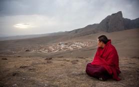 Рецепт омоложения травами от тибетских монахов