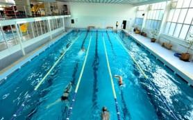 Правила оформления справки для посещения бассейна