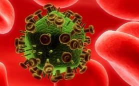 Ученые обнаружили смертельно опасный для организма человека вирус