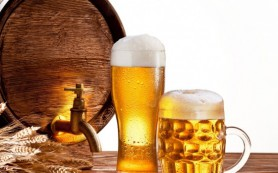 Регулярное потребление пива способствует улучшению здоровья