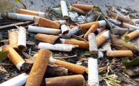 Изменение ДНК влияет на потребление никотина