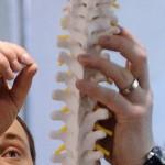 Ученые разработали новую технологию для восстановления костей