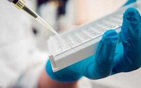 Рак поджелудочной железы разделили на 4 отдельных заболевания