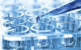 Обнаружены продуценты неизвестных ранее антибиотиков
