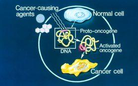 На пути к детальному каталогу раковых генов