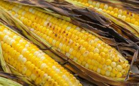 Медики: растворимые кукурузные волокна полезны для женских костей