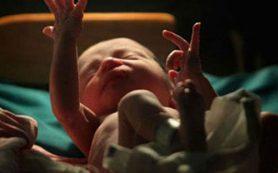Американка передала органы умершего новорожденного ученым