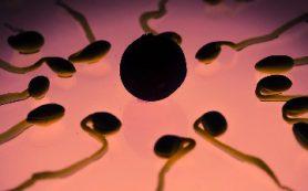 Исследователи в шаге от разработки новых методов лечения экземы