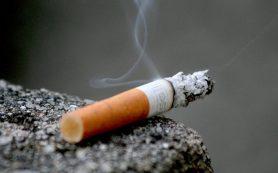 Учёные развенчали мифы о том, как бросить курить