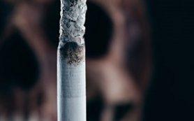 Курение в восемь раз повышает шансы смерти от сердечного приступа