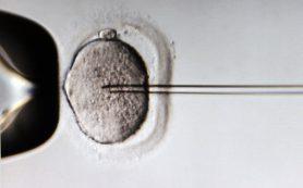 Очистка зараженных клеток избавит от ВИЧ
