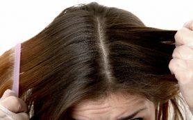В чем секрет здоровых и блестящих локонов: готовим волосы к лету