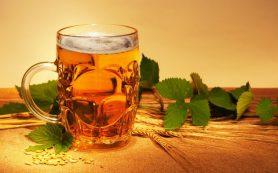 Вред и польза пива — две стороны одной медали
