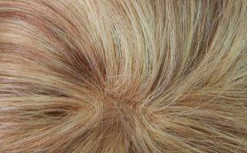 Советы по уходу за париком из натуральных волос
