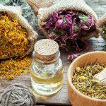 Успокоительные средства для нервной системы на травах