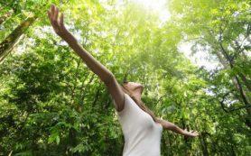 Натуральная гигиена, законы природы и голодание
