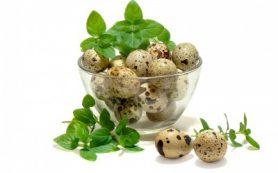 Маски из перепелиных яиц для лица