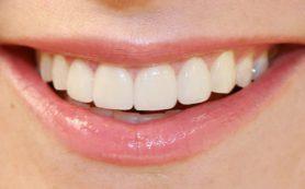 Зубы – наше всё