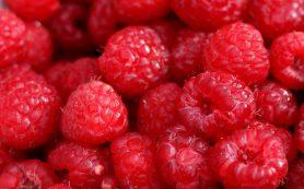 Ученые: употребление в пищу ягод помогает предотвратить рак