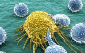 Ученые нашли белок, связанный с агрессивной лейкемией