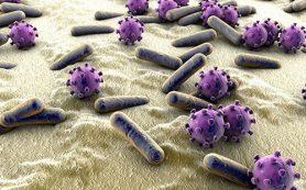 Древний «родственник ВИЧ» — игнорируемая угроза здоровью