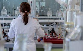 Найден способ остановить развитие рака мозга