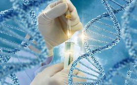 Необходимость предоперационной химиотерапии определит генетический анализ