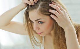 Волосы. Обработка потери волос