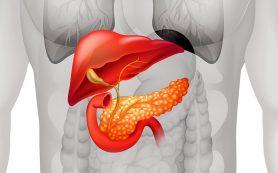 Количество случаев рака поджелудочной железы растет: симптомы этого заболевания!
