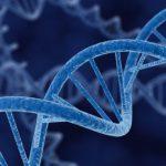 Раковыми могут становиться здоровые клетки без собственных генных мутаций