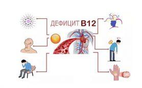 К чему приводит недостаток витамина В12 в организме?