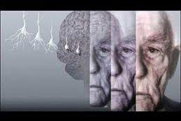 ВОЗ выпустила первые рекомендации по профилактике деменции