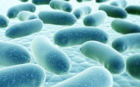 Разработаны лекарства, имитирующие эффект дружественной микрофлоры кишечника