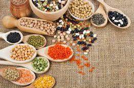 Обилие растительного белка в рационе положительно влияет на продолжительность жизни