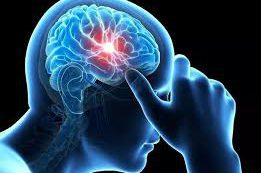 Предрасположенность к алкоголизму и уменьшение мозга: что первично?