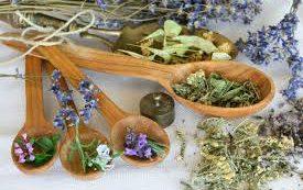 Лечебные растений для здоровья зубов