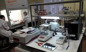 Биоматериалы для тканевой инженерии и хирургической стоматологии