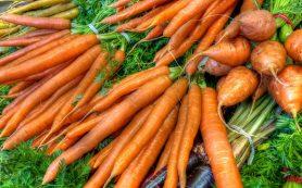 Богатые клетчаткой продукты помогают предотвратить рак молочной железы