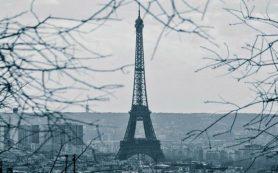 Появились доказательства существования COVID во Франции до известного «китайского следа»