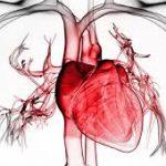 Влияние гриппа на сердце оказалось тяжелее, чем считалось