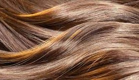 Жизнь волоса