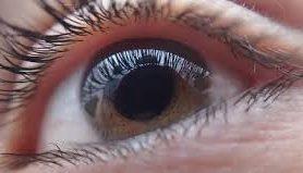 Генная терапия одного глаза улучшила зрение и в другом