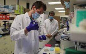 Новое противораковое средство работает хорошо и легко получить, говорят ученые