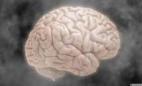 Исследователи открыли новое генетическое отклонение, опасное для мозга